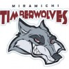 T-Wolves Earn Two Stars in MHL this Week