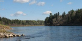 Miramichi Fishing Report for May 17, 2012