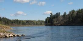 Miramichi Fishing Report for May 17, 2012