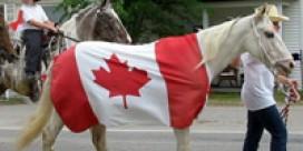 Celebrate Canada Day in Blackville!