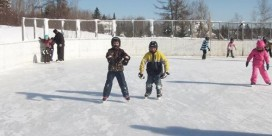 Blackville Rec Council Hosting Free Skating Party