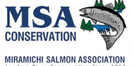 MSA Presentation to Ministerial Advisory Committee for Atlantic Salmon