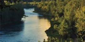 Miramichi Fishing Report for Thursday, August 28, 2014