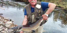 Miramichi Fishing Report for Thursday, October 23, 2014