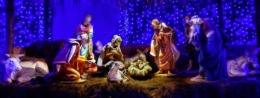 discover the gift of christmas bible discovery series - Biblical Christmas Story