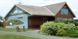 Summer Happenings at Middle Island