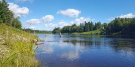 Miramichi Fishing Report for Thursday, September 15, 2016