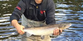Miramichi Fishing Report for Thursday, September 8, 2016