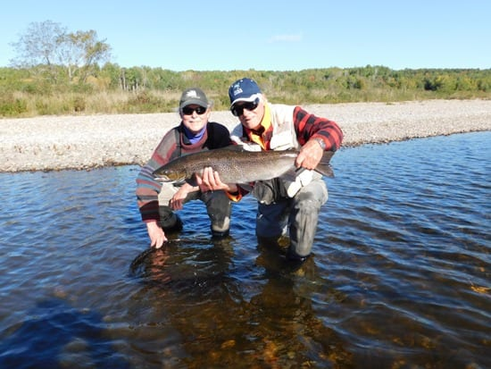 Ledges guide Lloyd Lyons with salmon caught by Bob Lauer