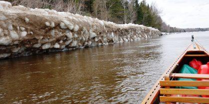 Spring Salmon Blog