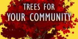 75 Years of Rotary – Trees for your Community