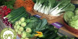 Experience the Local Farmers Markets