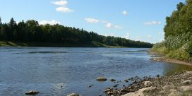 Temporary Closure of Salmon Pools on the Miramichi River