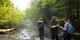 Atlantic Salmon Population Recovery with The Friends of the Kouchibouguacis