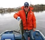 Bill Seymour with a nice striped bass caught last week
