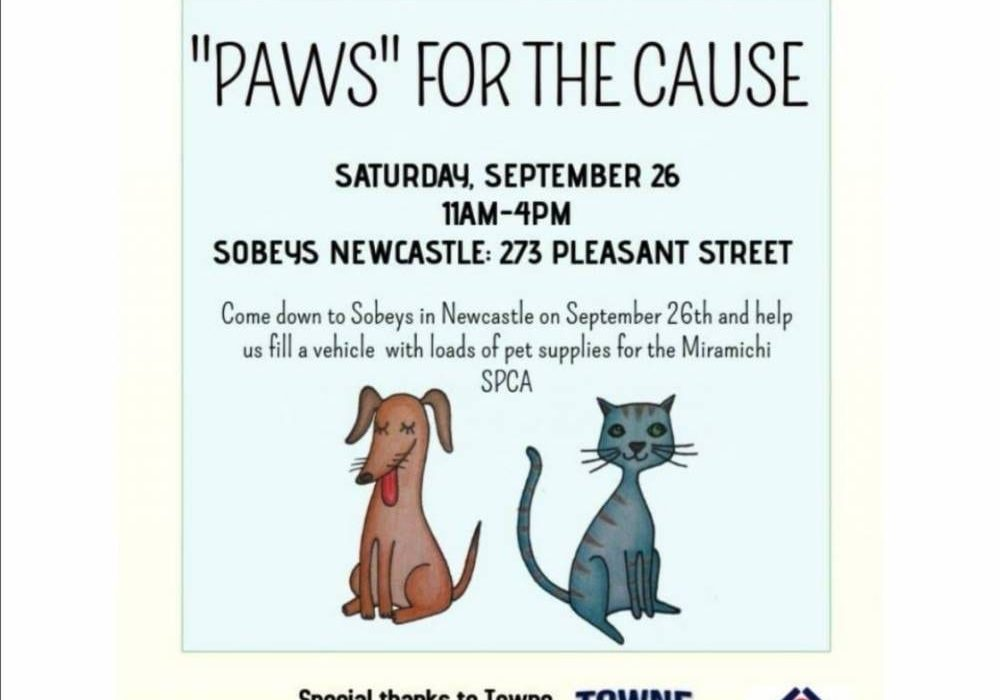 Paws-for-Cause