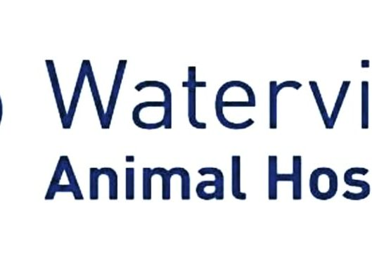 Waterview-Animal-Hospital