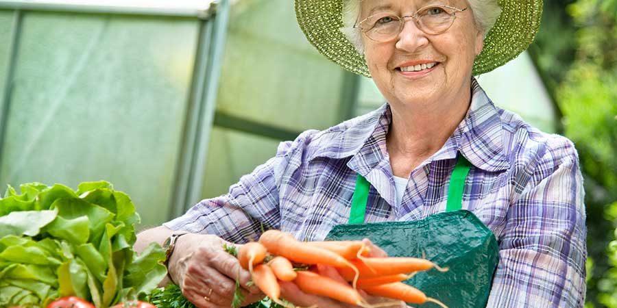 vegetables-garden